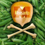 Imperium zła : 12 rakotwórczych produktów Monsanto