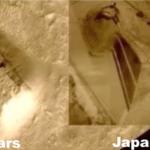 Masywna świątynia zauważona na Marsie – identyczna ze starożytnym japońskim grobowcem