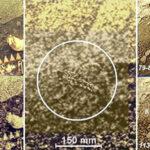 Rosyjski naukowiec twierdzi, że znalazł życie pozaziemskie na Wenus