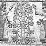 Nadprzyrodzone moce świętych drzew w starożytnych kulturach